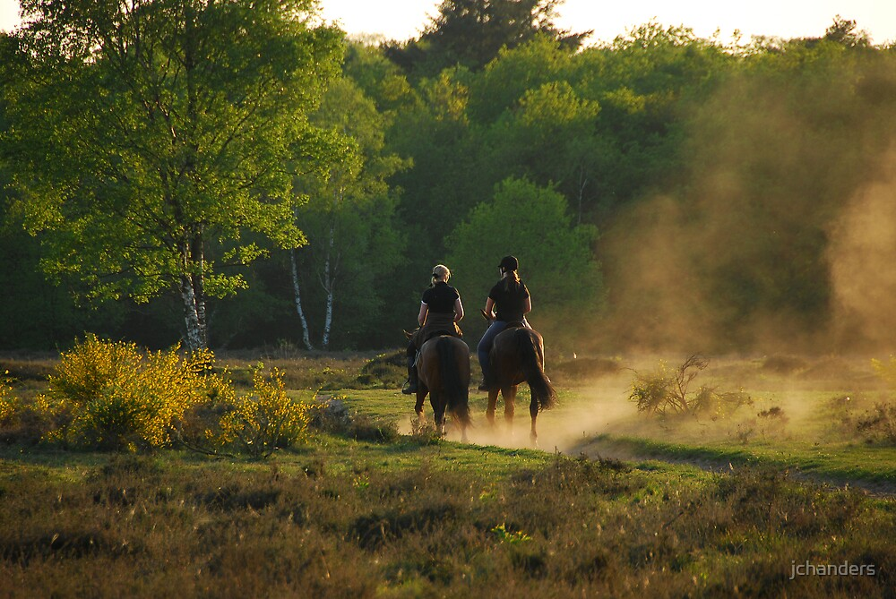 Riding out on the evening heath by jchanders