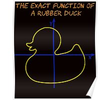 Harry Potter The exact function of  a rubber duck Poster