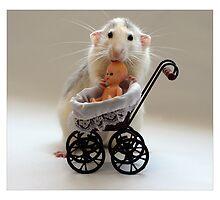The Babysitter. by Ellen van Deelen