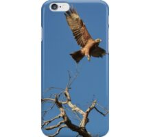 The Kite, The Moon, The Tree iPhone Case/Skin