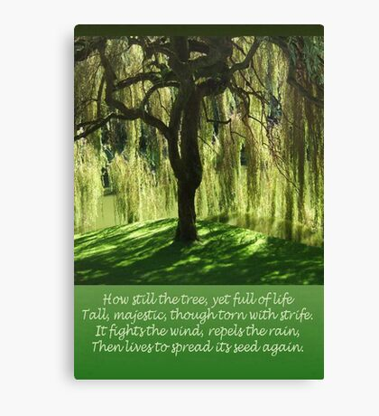 How Still the Tree Photograph and Prose Canvas Print