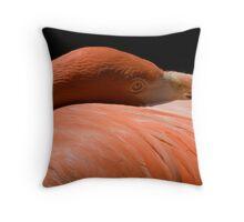 Pink Flamingo Siesta Throw Pillow