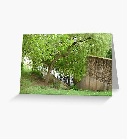 weeping willow Greeting Card