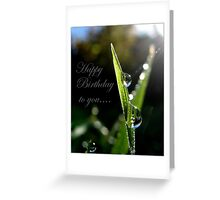 Happy Birthday to you... Greeting Card