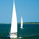 Sailboats on the Horizon by Mary Campbell