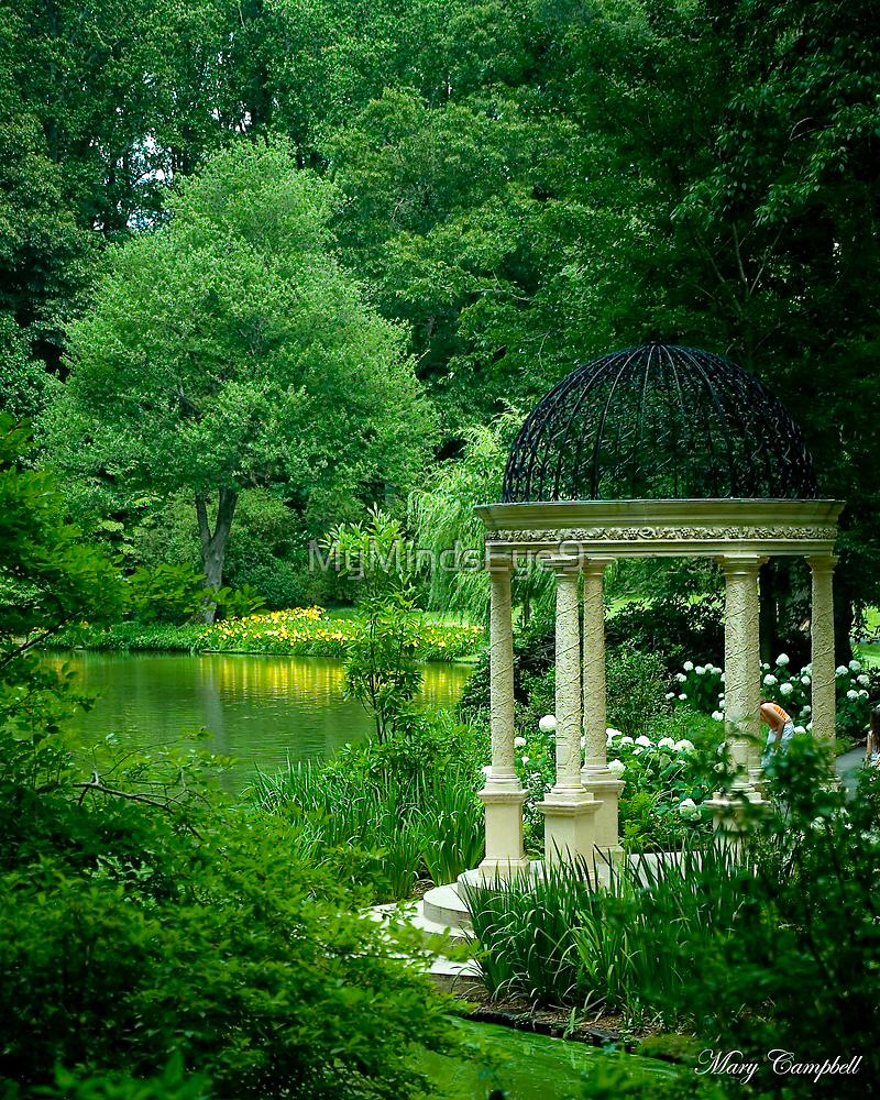 The Reflecting Garden © by Mary Campbell