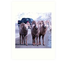 Three Amigos Art Print
