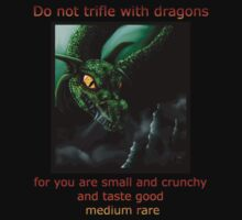 Do Not Trifle With Dragons... T-Shirt