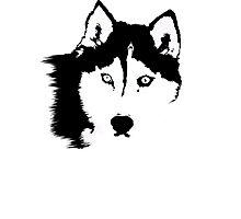 Black and White Husky Photographic Print
