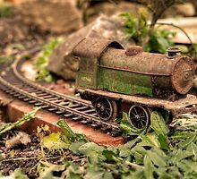 Leaves on the Line  by Rob Hawkins