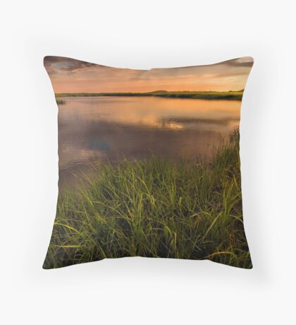 Provincetown Tidelands Throw Pillow