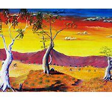 Three trees Photographic Print