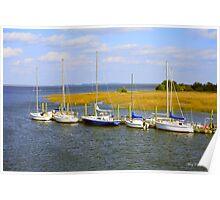 Coffins Point Poster