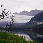 Lake Gunn, New Zealand by Elana Bailey