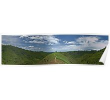 Field Panoramic Poster