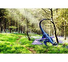 Woodland Dragon Photographic Print