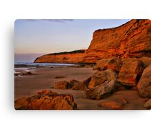 """Dawn at Bird Rock"" Canvas Print"