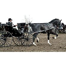 Black Horse and Carriage Photographic Print