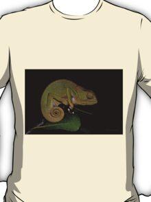 Changing Colour - Chameleon (Chamaeleonidae) T-Shirt