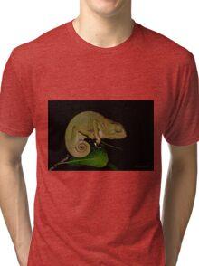 Changing Colour - Chameleon (Chamaeleonidae) Tri-blend T-Shirt