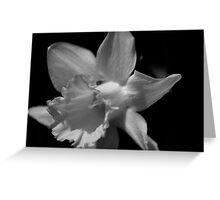 flower 10 Greeting Card