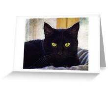 Beautiful Black Cat   Greeting Card