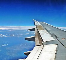 Plane Wing by Tommy Seibold