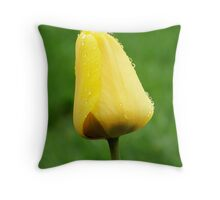 Droplets of Beauty Throw Pillow