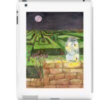 Alabama Summer Night iPad Case/Skin