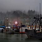 Dim Light on the Bay by Charles & Patricia   Harkins ~ Picture Oregon
