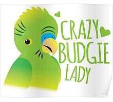 Crazy budgie lady (Budgerigar bird) Poster