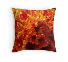 Drops of color.. Throw Pillow