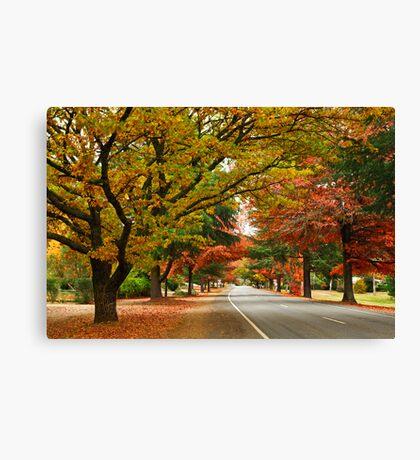 Delany Avenue - Bright Canvas Print