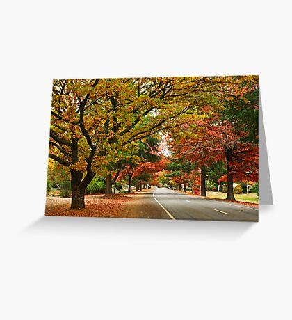 Delany Avenue - Bright Greeting Card