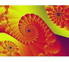 Floral Evolution 003.20.6.g4-280 Photographic Print