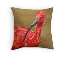 How do you want me to pose? Throw Pillow