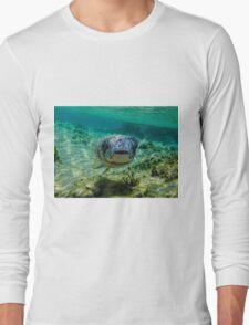 Inquisitive Puffer Fish (Tetraodontidae) Long Sleeve T-Shirt