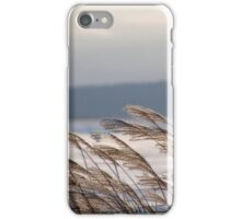 Winter winds iPhone Case/Skin