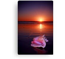 Seashell at Sunset Canvas Print