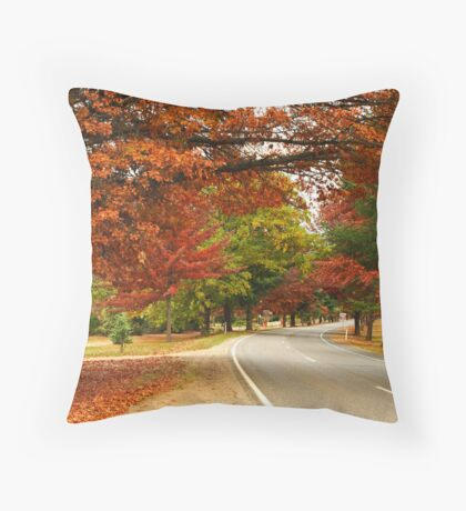 Delany Avenue - Bright Throw Pillow