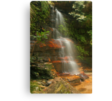 Federal Falls in the Blue Mountains Canvas Print