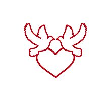 Doves red heart Photographic Print