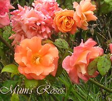 Mum's Rose Garden by bronspst