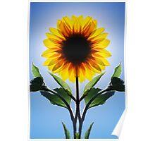 Symflower Poster