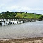 Whananaki Bridge - the longest.........! by Roy  Massicks