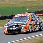 Garth Tander in action by Angryman