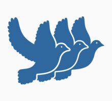 Blue doves Kids Clothes