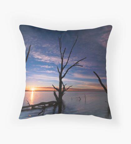 Lake Bonney Sunrise Throw Pillow