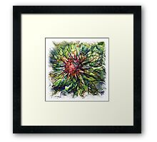 The Atlas Of Dreams - Color Plate 109 Framed Print