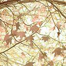 dancing leaves by Amagoia  Akarregi